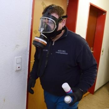 Schädlingsbekämpfung mit Detektoren, Fraß-Gel und Gift. | Björn Nöchel Hygieneservice